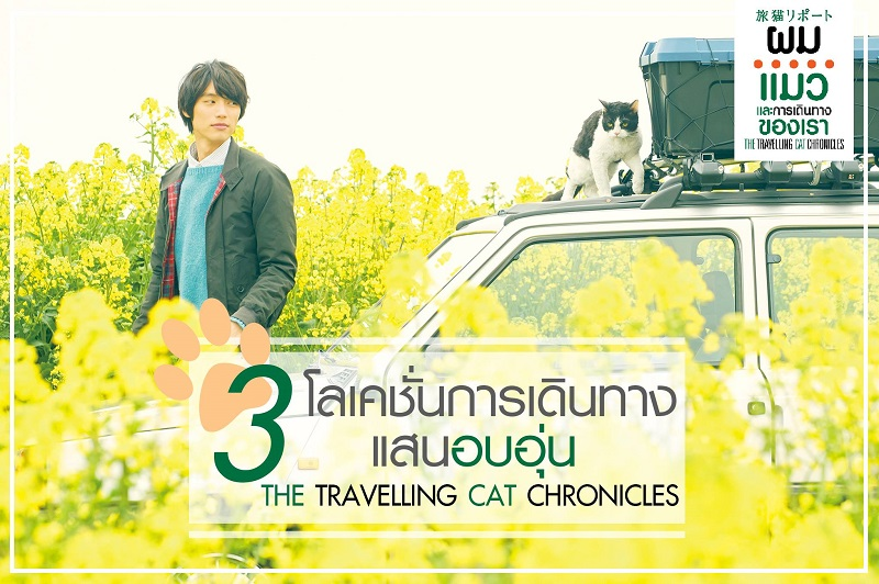 Travel-Cat-Chronicles-Location00
